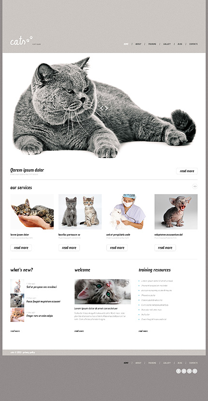 WP Theme for Clinics and Pet Forums