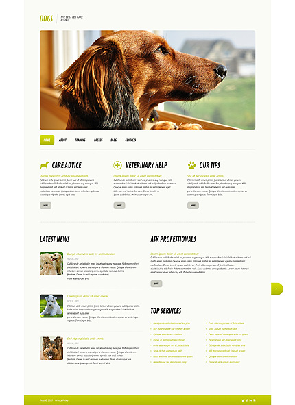 WP Theme for Pet Shelter