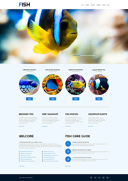 WordPress Theme for Tropical Fish Stores