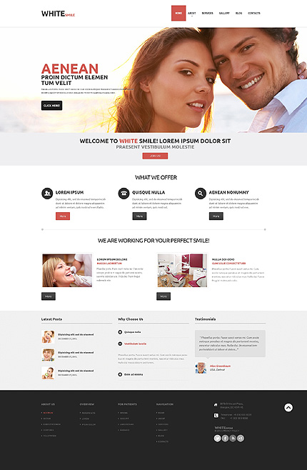 Hollywood Smile Dentists Responsive WordPress Theme