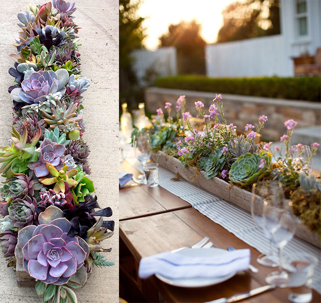 . Succulent Wedding Centerpieces and Table Number
