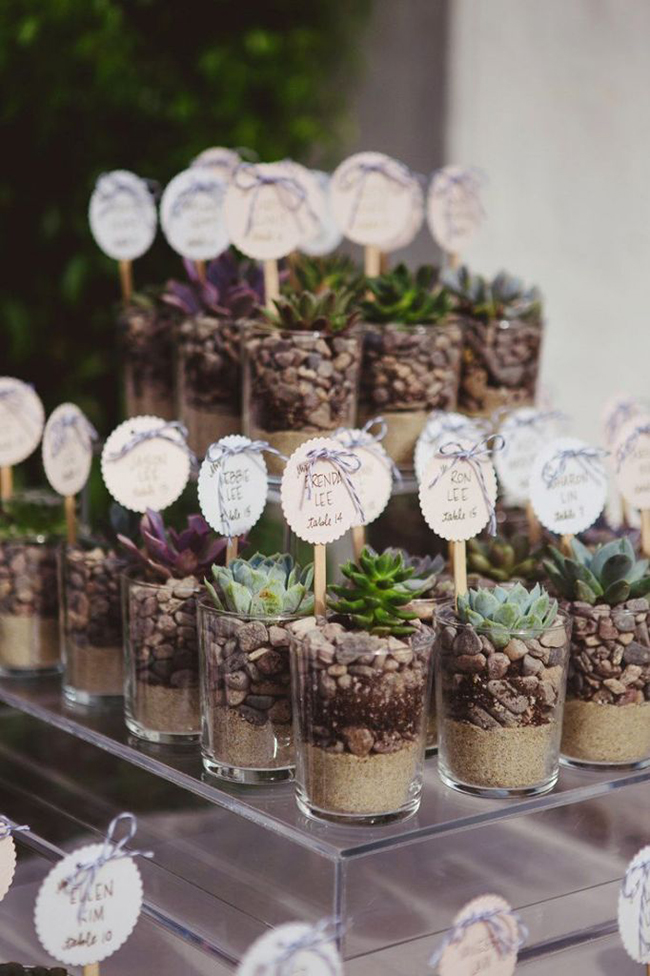 Rustic-Wedding-Favor-Ideas-Succulent-Wedding-Favors-682x1024