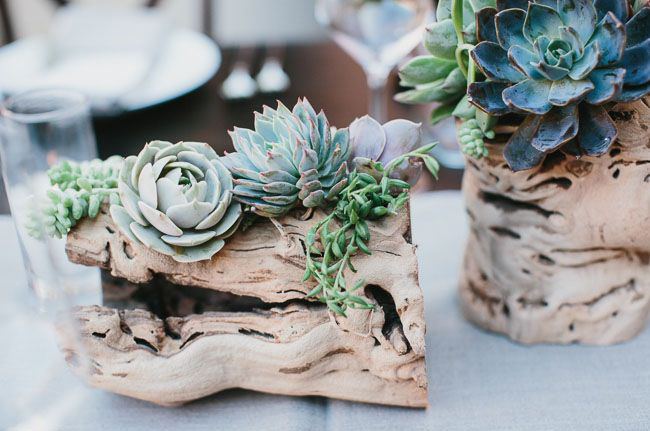driftwood-and-succulent-wedding-table-centerpieces