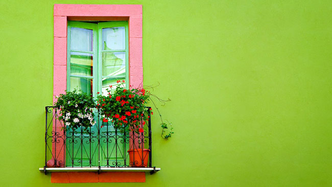 green wall window wallpaper