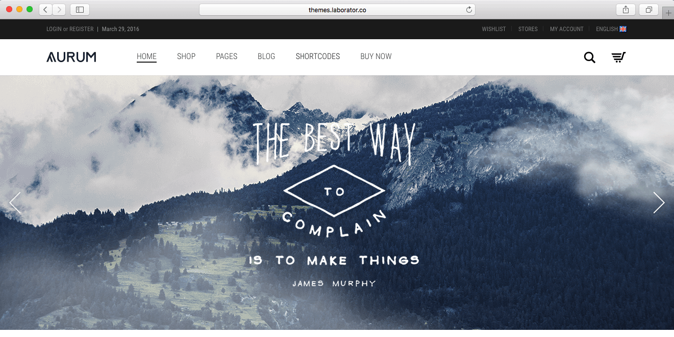 example of WooCommerce theme of 2016