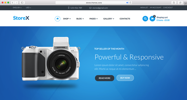 example of a WordPress eCommerce theme of 2016
