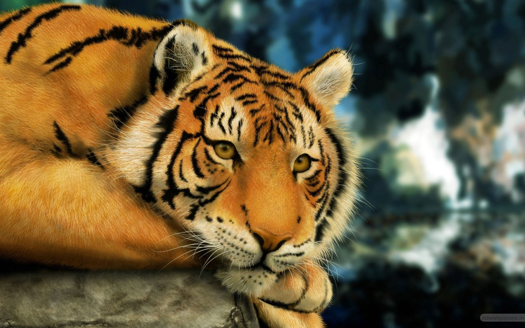 Tiger Painting Wallpaper