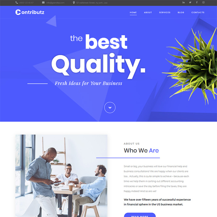 Contributz — Business Consulting Elementor Template