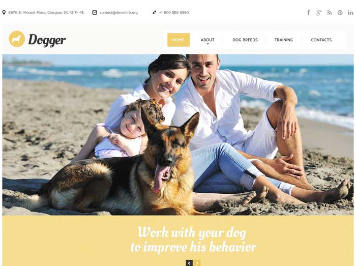 Best-Dog-Responsive-Website-Bootstrap-Themes