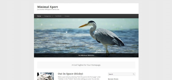 Minimal Xpert - WordPress Responsive Theme