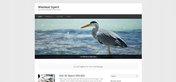 Minimal Xpert - WordPress Responsive Theme