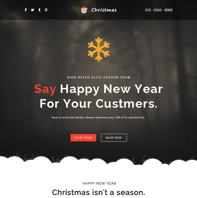 Best Christmas Email Newsletter Templates   Designmaz