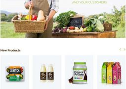 best-food-woocommerce-themes-2016