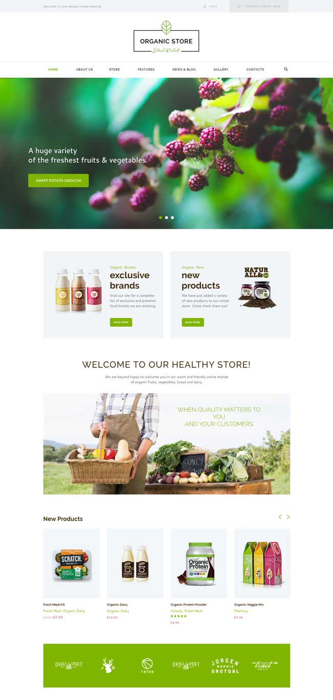 organic-store-organic-food-eco-products-theme