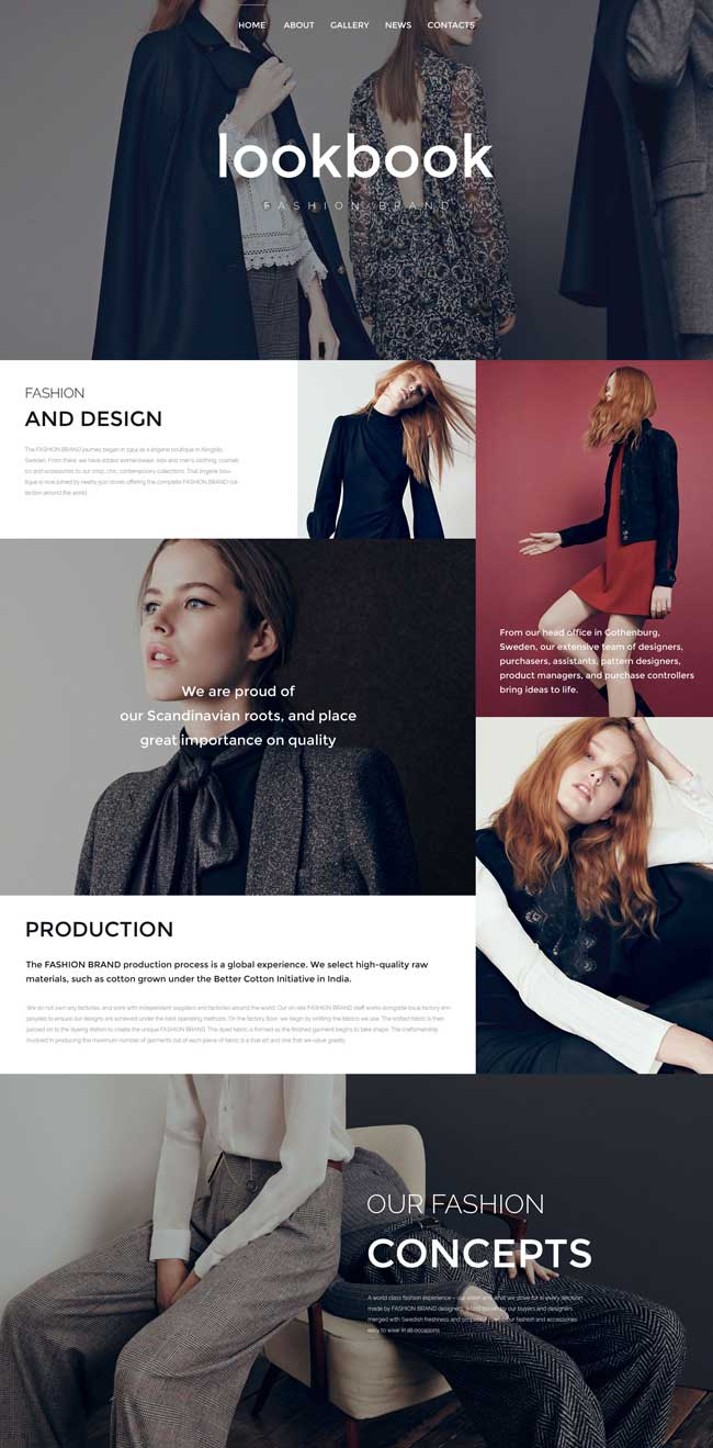 15 Best Multipurpose Html5css3 Website Templates 2016 Designmaz