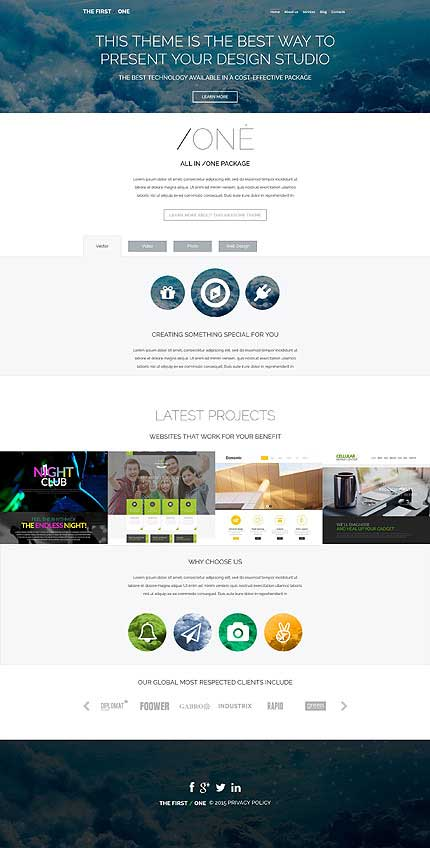 Professional-CV-WordPress-Theme