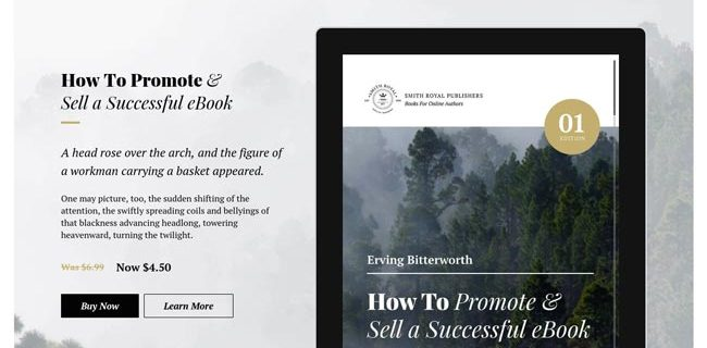best-wordpress-themes-for-selling-ebooks-2016