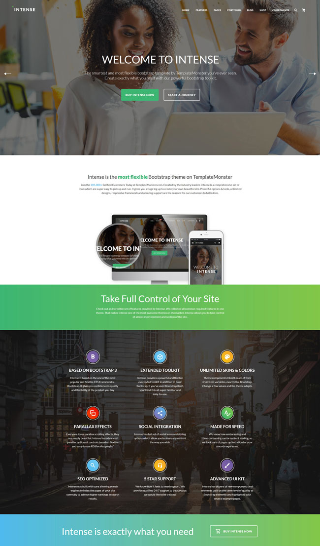 Intense-Multipurpose-HTML5-CSS3-Website-Template