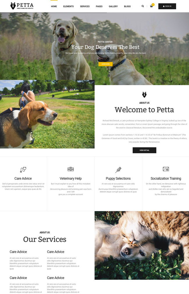 petta-premium-pet-care-wordpress-theme